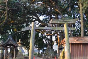 torii1.jpg
